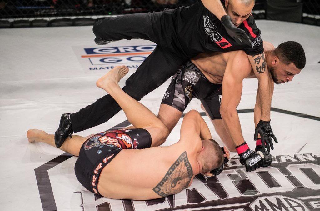 Retour sur le webinar consacré au code sportif du MMA en France