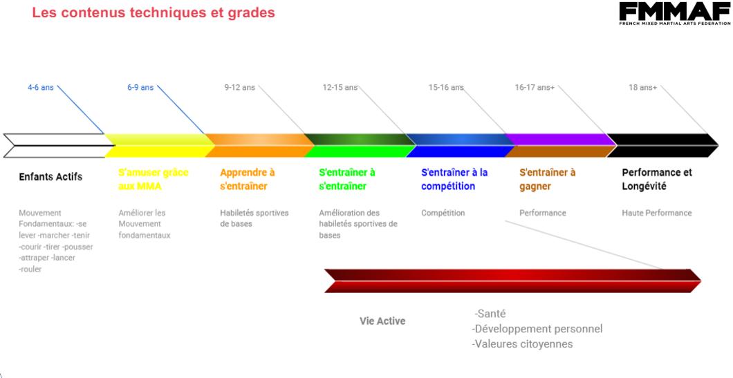 Infographie Grade de MMA