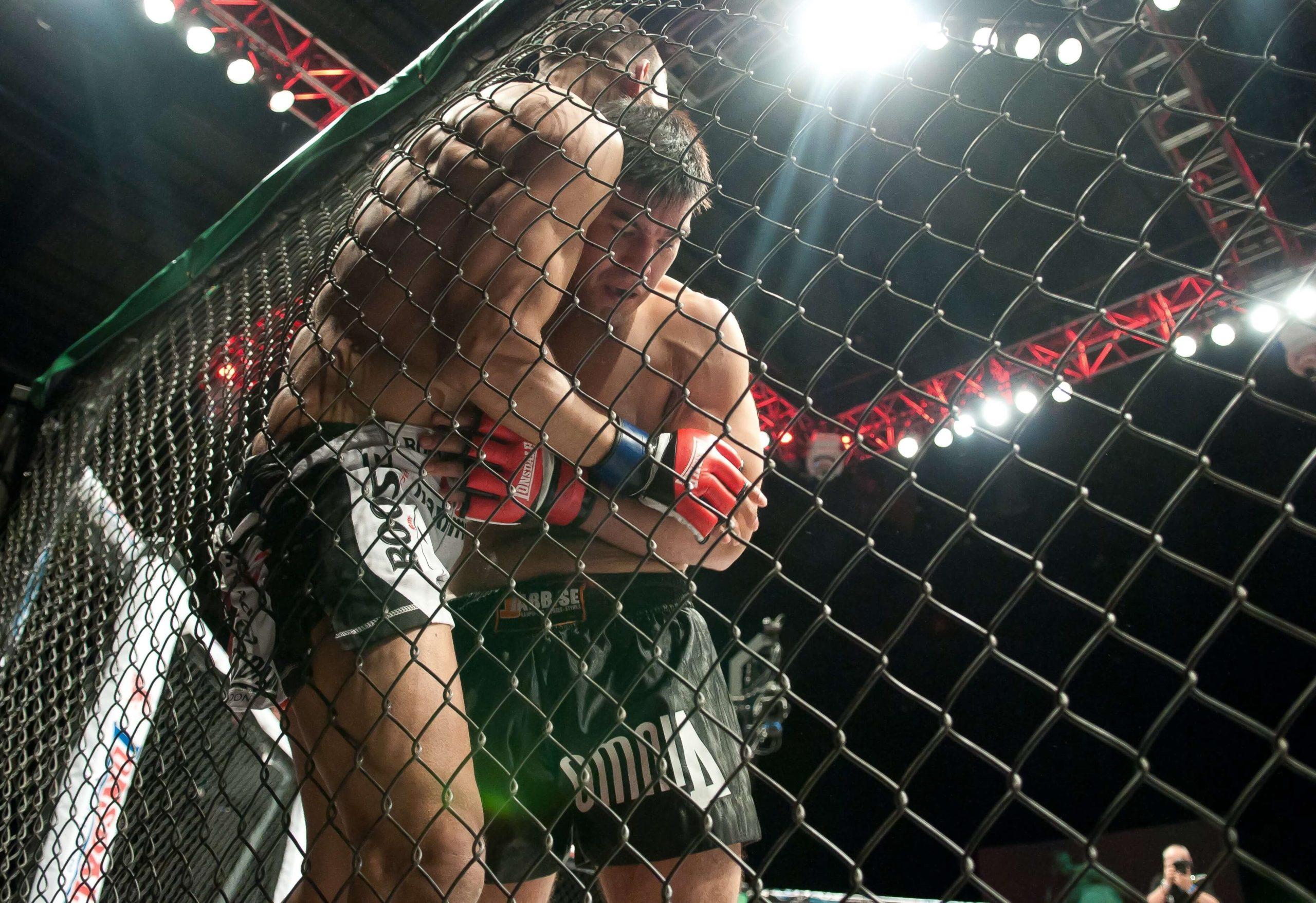 mma photo cage combat professionnel fmmaf federation des arts martiaux mixte français